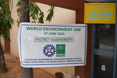 World Environment Day Celebrations at CMC